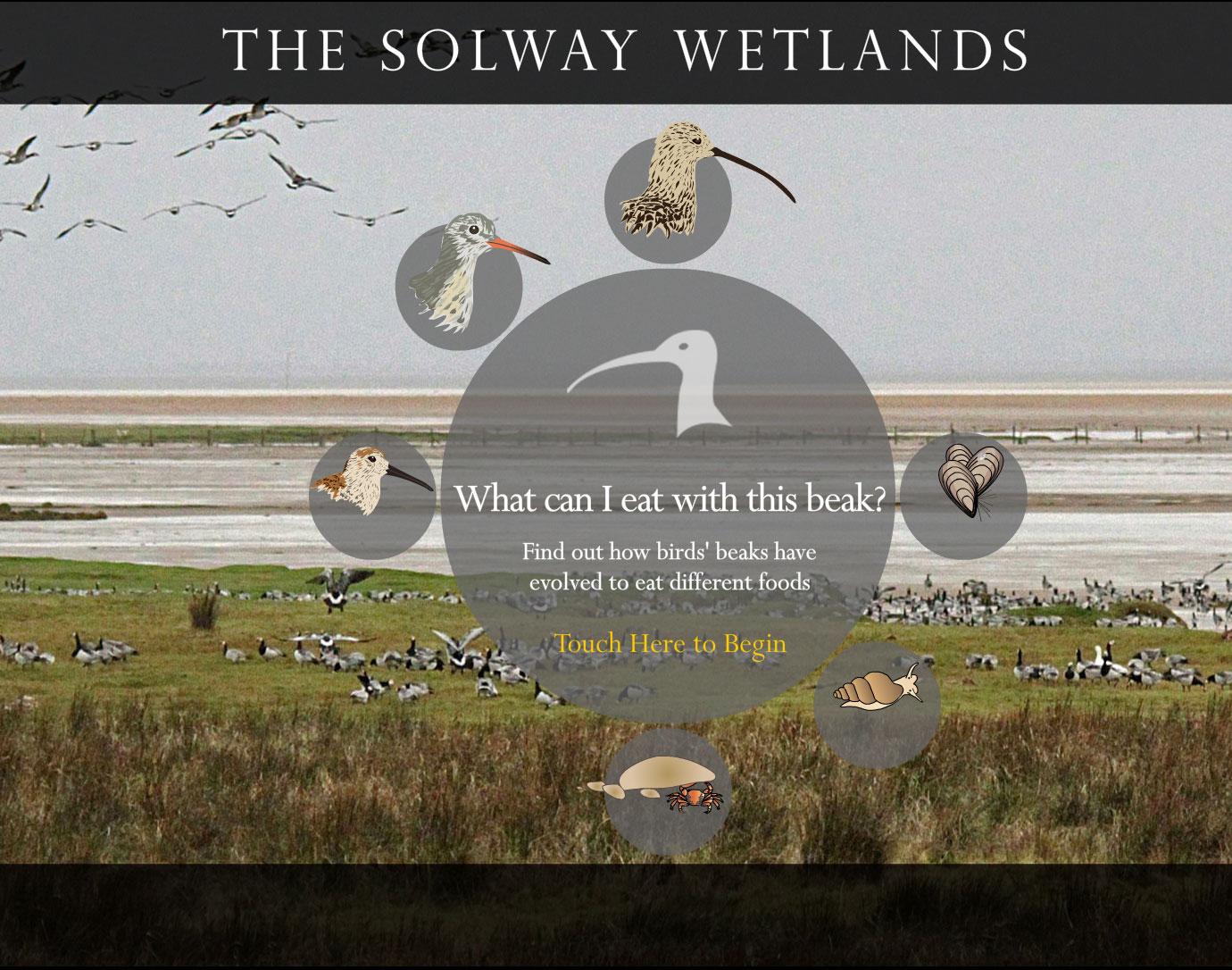 solway wetlands touchscreen interactive